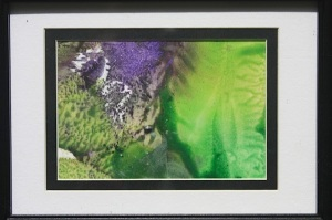 Greens, purples, framed #?